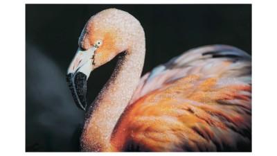 Tablou Mauro Ferretti Flamingo B - 80x120 cm
